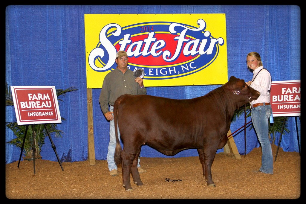 CF Miss Dakota's Taboo Reserve Grand Champion Heifer at North Carolina State Fair 2014 Junior Show